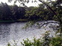 河在微明下 库存照片