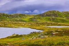 河在挪威的布斯克吕地区 免版税库存照片
