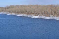 河在春天 库存图片