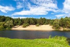 河在有一个沙滩的一个杉木森林里 免版税库存照片