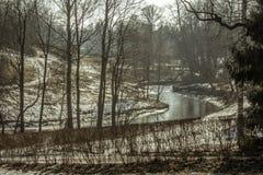 河在有雾的一个公园 免版税库存照片