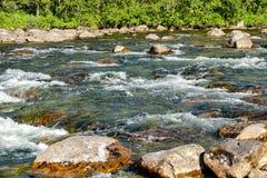 河在森林里,在瑞典斯堪的那维亚北部欧洲 免版税库存照片