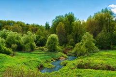 河在森林里,弯曲的,蓝天在繁茂花园里 库存照片