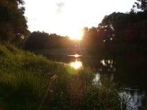 河在森林里 库存照片
