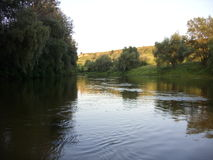 河在森林里 免版税库存照片