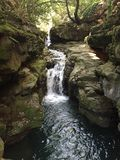 河在法国的森林里南部 免版税库存图片