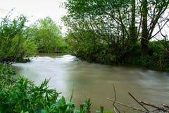 河在洪水期间的乌克兰乡下 库存照片