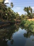 河在热带 免版税库存照片