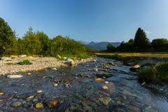 河在特兰西瓦尼亚,罗马尼亚,欧洲 库存图片