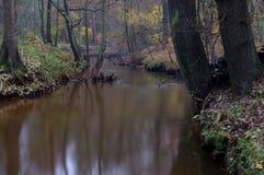 河在秋天。 免版税库存照片