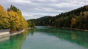 河在秋天的森林风景 免版税图库摄影