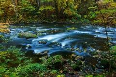 河在秋天 库存照片