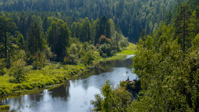 河在自然公园明亮的阳光下 免版税库存图片