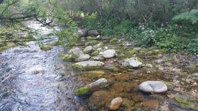 河在西伯利亚 免版税库存照片