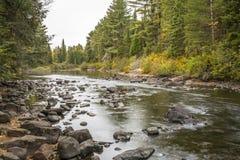 河在阿尔根金族公园-安大略,加拿大 免版税库存照片