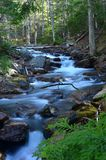 河在阿科底亚国家公园 免版税图库摄影