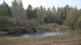 河在雨中 影视素材