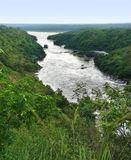 河在Murchison Falls附近的尼罗风景 库存照片