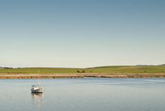 河场面tamar平静的塔斯马尼亚岛 库存照片