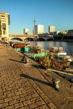 河塞纳河在平衡的巴黎在阳光下 库存图片