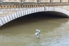河塞纳河洪水在巴黎 免版税库存照片