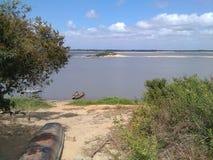 河奥里诺科河 库存图片