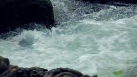 河小河快速流动的水  股票视频
