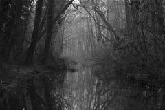 河小的冬天 库存照片