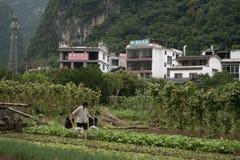 河巡航在阳朔县,中国 库存照片
