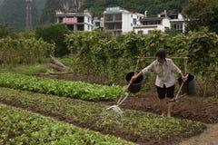 河巡航在阳朔县,中国 免版税库存图片