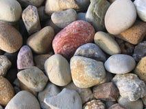 河床五颜六色的岩石 免版税库存照片