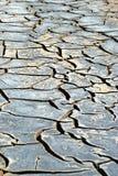 河床干燥河 库存照片