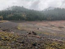 河床干盐湖 免版税库存照片