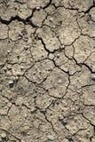 河床干盐湖 免版税图库摄影