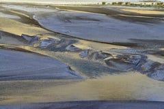 河床的抽象自然图象,水的表面反射太阳,大海,在的绿叶的金黄颜色 图库摄影