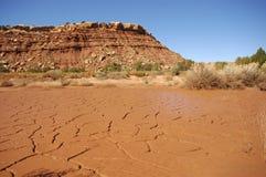 河床破裂的干燥泥池塘 免版税图库摄影
