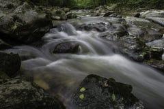河床, Pakra克罗地亚 免版税库存照片