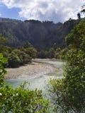 河弯和曲线通过树木丛生的原野在新西兰 免版税库存图片