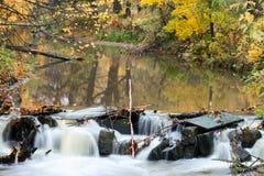 河急流特写镜头有金黄叶子反射的在水中,长的曝光 免版税库存图片