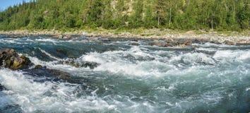 河急流的全景在极性乌拉尔 免版税库存照片