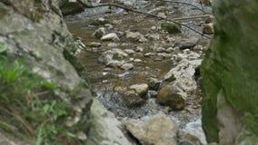 河急流通过峭壁 股票录像