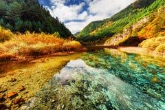 河惊人的透明的水  秋天五颜六色的横向 免版税库存图片
