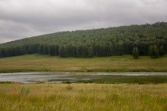 河慢慢地流动 在早期的秋天天空的灰色云彩在绿色领域、树、森林和巨大的山关闭 很多 免版税库存图片