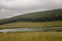 河慢慢地流动 在早期的秋天天空的灰色云彩在绿色领域、树、森林和巨大的山关闭 很多 库存照片