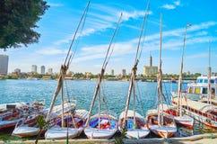 河旅行在开罗,埃及 库存图片