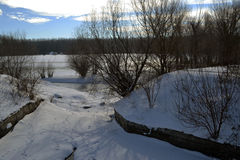 河是Borcea冻银行  图库摄影