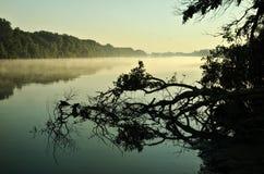 河有雾的早晨 免版税库存照片