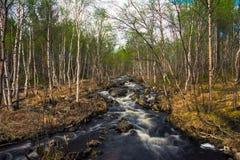 河概略的春天流解冻天气 免版税库存照片