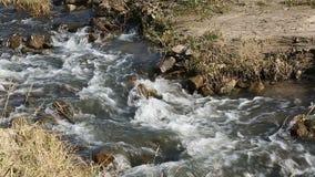 河横向 有岩石底部的小河 快的小河 股票视频