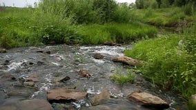 河横向 有岩石底部的小河 股票视频